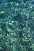 Blue seabed — 图库照片
