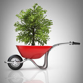 Red wheelbarrow with green tree — Stock Photo