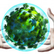 Hands holding earth globe — Stockfoto