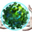 Hands holding earth globe — Stock fotografie