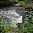 White water rushing down a water fall. — Stok video