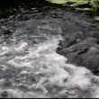 White water rushing down a water fall. — Stock Video
