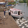 Holiday boats on the river Bure at Wroxham. - Stock Photo