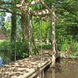 Stock Photo: Draw bridge in the woodland walk at Oxburgh Hall.