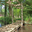 Royalty-Free Stock Photo: Draw bridge in the woodland walk at Oxburgh Hall.