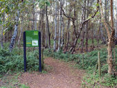 One of the entrances to Holme Fen Nature Reserve. — Stock Photo
