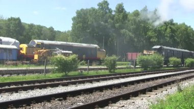 Steam train running on a preserver line. — Stock Video