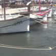 Stock Video: Boats moored in harbour.