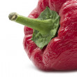 Stock Photo: Wilted pepper
