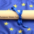 Stock Photo: Europeunion law