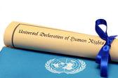 всеобщая декларация прав человека — Стоковое фото