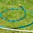 Hose for watering of lawn water — Stock Photo #50226719