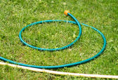 Hose for watering of lawn water — 图库照片