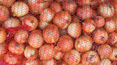 Crop of yellow onions in a red net bag — Stock Photo