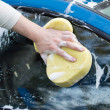 The process of cleaning the hood of the car with the help of shampoo and yellow sponges — Stock Photo #51311545