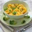 Orecchiette vegetarian - Stock Photo