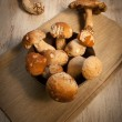 champignons porcini — Photo