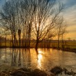 Sunset on pond - Stock fotografie