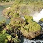 Iguasu Falls — Stock Photo #13703167