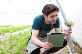 年轻的商业农夫在他的平板电脑上工作 — 图库照片