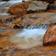 Rocky Mountains Stream - Stock Photo