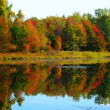 Autumn Lake  — Photo