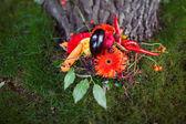 橙色蔬菜的婚礼花束 — 图库照片