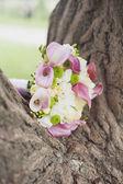 在公园里的白色和粉红色的婚礼花束 — 图库照片