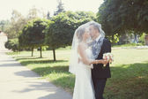 Bride and groom kissing in the park — Стоковое фото