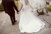 Bride and groom on the stairs — Stock Photo