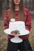 White wedding cake with a sprig of fir and red berries — Stock Photo