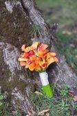 Wedding bouquet orange calla — Stockfoto