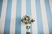 Bridal bouquet of Gypsophila — Stock Photo