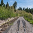 Narrow gauge — Stock Photo
