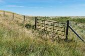 Brána — Stock fotografie