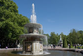 """The """"Roman"""" fountains in the Lower Park. Peterhof — Stock Photo"""