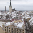 Winter Tallinn — Foto de Stock