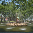 "Fountain ""Sun"" in the Lower Park. Peterhof — Foto Stock"