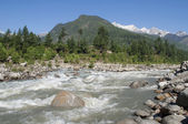 The river Beas in the Kulu valley. Northern India — Stock Photo