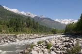 The river Beas in the Kulu valley. Northern India — Zdjęcie stockowe
