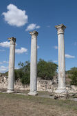 The columns of the ancient Salamis. Cyprus — Stock Photo