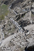 Jam on a mountain road. The Himalayas, Northern India — Stock Photo