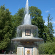Romfountain in Lower Park of Peterhof. Saint-Petersburg — Stock Photo #21807771
