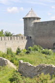 View on the portal of the tower. Ivangorod fortress — Stock Photo