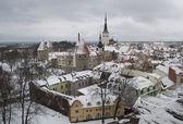 Tallinn oblačných zimních den — Stock fotografie