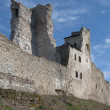 Ruins of medieval Livoniorder's castle in Rakvere. Estonia — Stock Photo #28060031