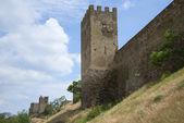 ジェノバの要塞の壁の下でsudak、クリミア半島 — ストック写真