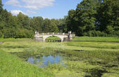 Vy över bron viskontiev sommardag. pavlovsk — Stockfoto