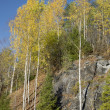 Autumn day in Karelia — Stock Photo
