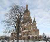 Peter and Paul Cathedral in Peterhof — Stock Photo